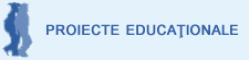 Proiecte 